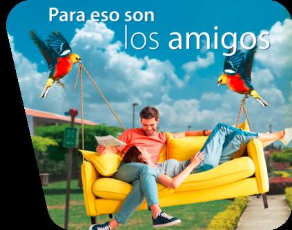 Campaña Amigos del Castillo