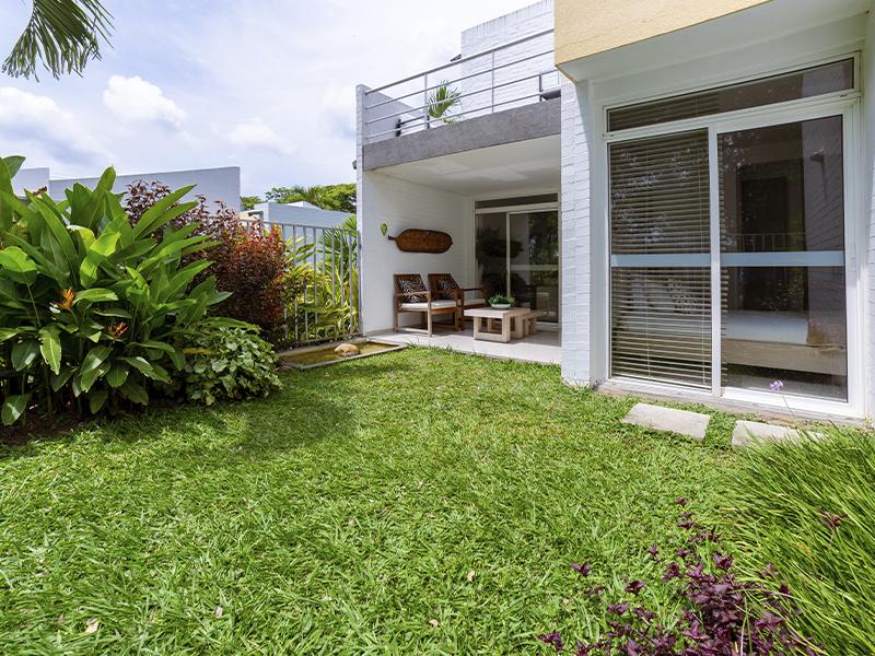 Girasoles_jardin